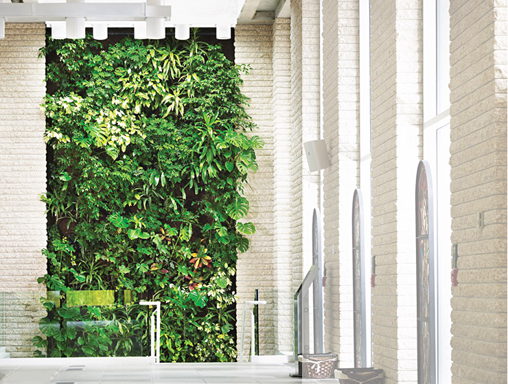 Saint Gabriel's Parish living wall